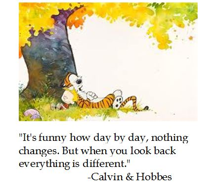 120922b-calvin-and-hobbes