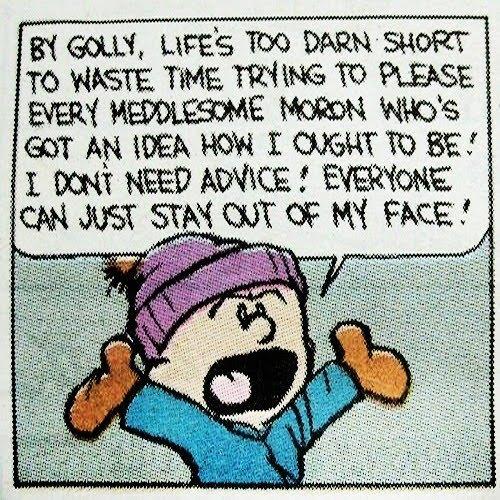 Reasons Why I Love Calvin & Hobbes   tip of my tongue moments
